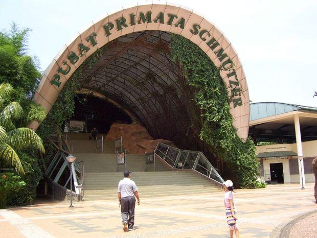 Wisata Jakarta Kebun Binatang Ragunan
